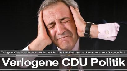 Parteiprogramm CDU SPD FDP Angela Merkel Frauke Petry AfD Wahlprogramm Flugblatt Prospekt Webseite Mitglieder Kandidaten