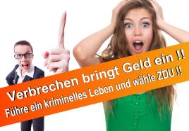 Wahlplakate CDU 2017 SPD FDP NPD AFD Piratenpartei Linke Bündnis 90 die Grünen